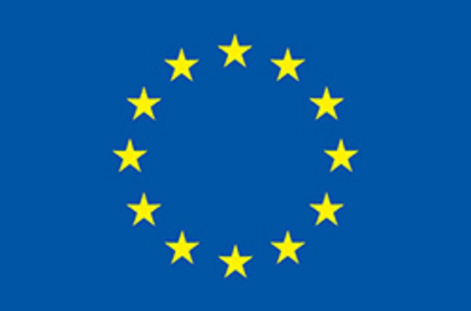 """ERC Advanced Grant """"ReConFort"""" - Europas Verfassung braucht Kommunikation"""